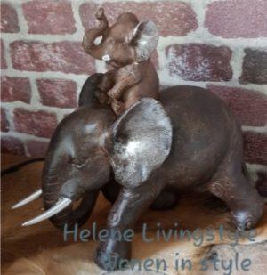 Olifant met baby